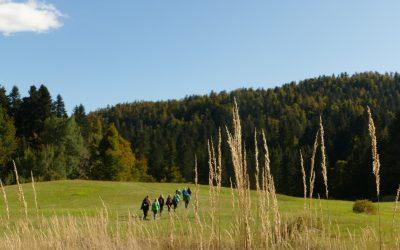 Studijski obilazak destinacije Zeleni Kras & Gorski kotar