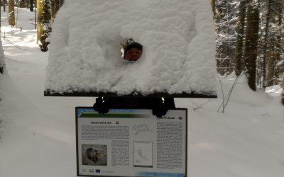 Zima u NP Risnjak